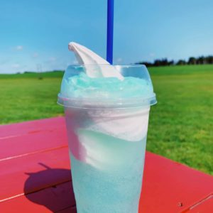 TROPICAL LIME STORM MOUNTAIN DEW BAJA BLAST FLOAT