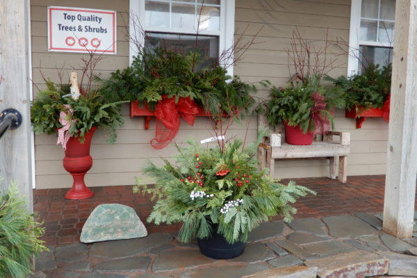 window boxes Christmas containers