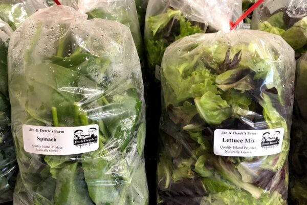 jen and dereks spinach and lettuce mix Jun 29 2020