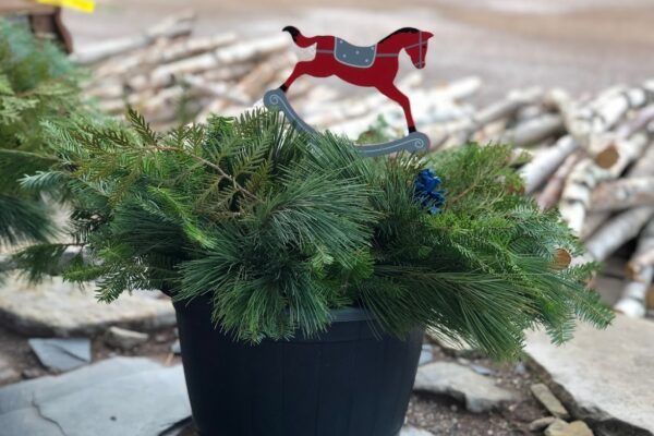simple preplanted container christmas